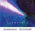 polygonal mosaic background ... | Shutterstock .eps vector #311141669