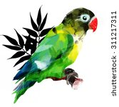 bright african parrot on a...   Shutterstock . vector #311217311