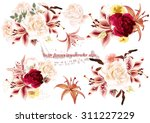 collection of  beautiful vector ... | Shutterstock .eps vector #311227229
