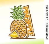 vector illustration on the...   Shutterstock .eps vector #311301551