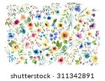 floral collection of painted... | Shutterstock . vector #311342891