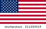 image of american  usa flag... | Shutterstock .eps vector #311354519