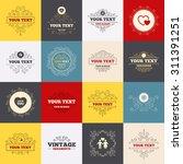 vintage frames  labels.... | Shutterstock .eps vector #311391251