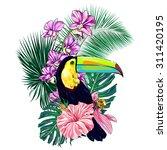toucan  exotic bird  tropical... | Shutterstock .eps vector #311420195