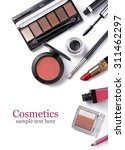 cosmetics set isolated on white | Shutterstock . vector #311462297