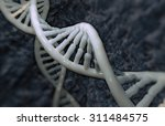 dna detail background with... | Shutterstock . vector #311484575