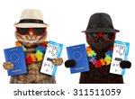 two sweet cat go on vacation.... | Shutterstock . vector #311511059
