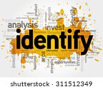 identity word cloud  business... | Shutterstock .eps vector #311512349