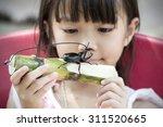 rural children are enjoying... | Shutterstock . vector #311520665