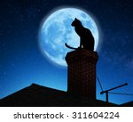 Stock photo cat on a roof 311604224