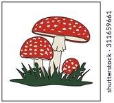 amanita closeup illustration of ... | Shutterstock .eps vector #311659661