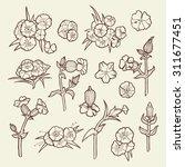 flower set. vintage collection... | Shutterstock .eps vector #311677451