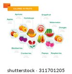 fruit calories consistency... | Shutterstock .eps vector #311701205