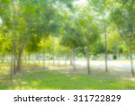 blurred park with bokeh... | Shutterstock . vector #311722829