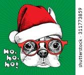 christmas card. portrait of... | Shutterstock .eps vector #311773859