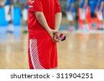 zagreb  croatia   august 28 ... | Shutterstock . vector #311904251