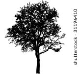 deciduous tree black silhouette ... | Shutterstock .eps vector #31196410