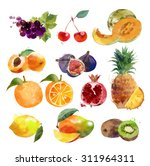 watercolor set of fruits | Shutterstock . vector #311964311
