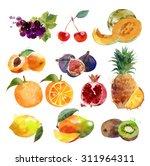 watercolor set of fruits | Shutterstock . vector #311964311