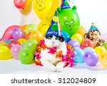 black and white cat in animal... | Shutterstock . vector #312024809