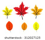 set of bright colorful autumn... | Shutterstock . vector #312027125