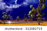joshua trees on desert