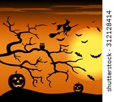 halloween night orange... | Shutterstock .eps vector #312128414