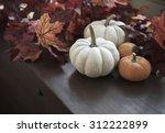 Autumn Still Life With Pumpkin...