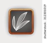 plant doodle | Shutterstock . vector #312301019