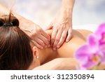 macro close up of hands... | Shutterstock . vector #312350894