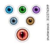set of colorful eye balls.... | Shutterstock .eps vector #312376349