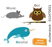 Letter M N O Mouse Narwhal Owl...