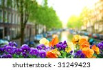 spring in amsterdam. beautiful... | Shutterstock . vector #31249423