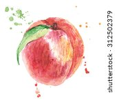 peach. watercolor painting fruit | Shutterstock . vector #312502379