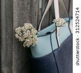 lady's bag | Shutterstock . vector #312524714