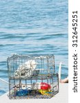 Crab Pots On Dock With Blue...