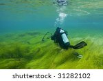 Scuba Diver In Shallows Of...