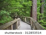 walking trail in vancouver | Shutterstock . vector #312853514