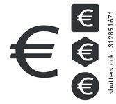 euro icon set  monochrome ...