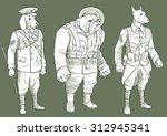 wwi anthropomorphic dog... | Shutterstock . vector #312945341