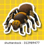 poisionous spider on yellow...