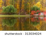 Autumn tints of nature park in...