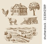 vector seamless farm and... | Shutterstock .eps vector #313042589