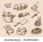 vector hand drawn food sketch... | Shutterstock .eps vector #313042601