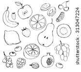 fruits. set of hand drawn... | Shutterstock .eps vector #313047224