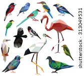 birds set colorful low poly... | Shutterstock .eps vector #313049531