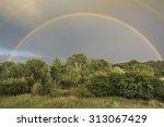 double rainbow spanning an... | Shutterstock . vector #313067429