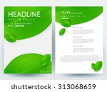 abstract vector modern flyers... | Shutterstock .eps vector #313068659