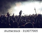 a crowd of people celebrating... | Shutterstock . vector #313077005