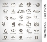 unusual icons set   isolated on ... | Shutterstock .eps vector #313144295